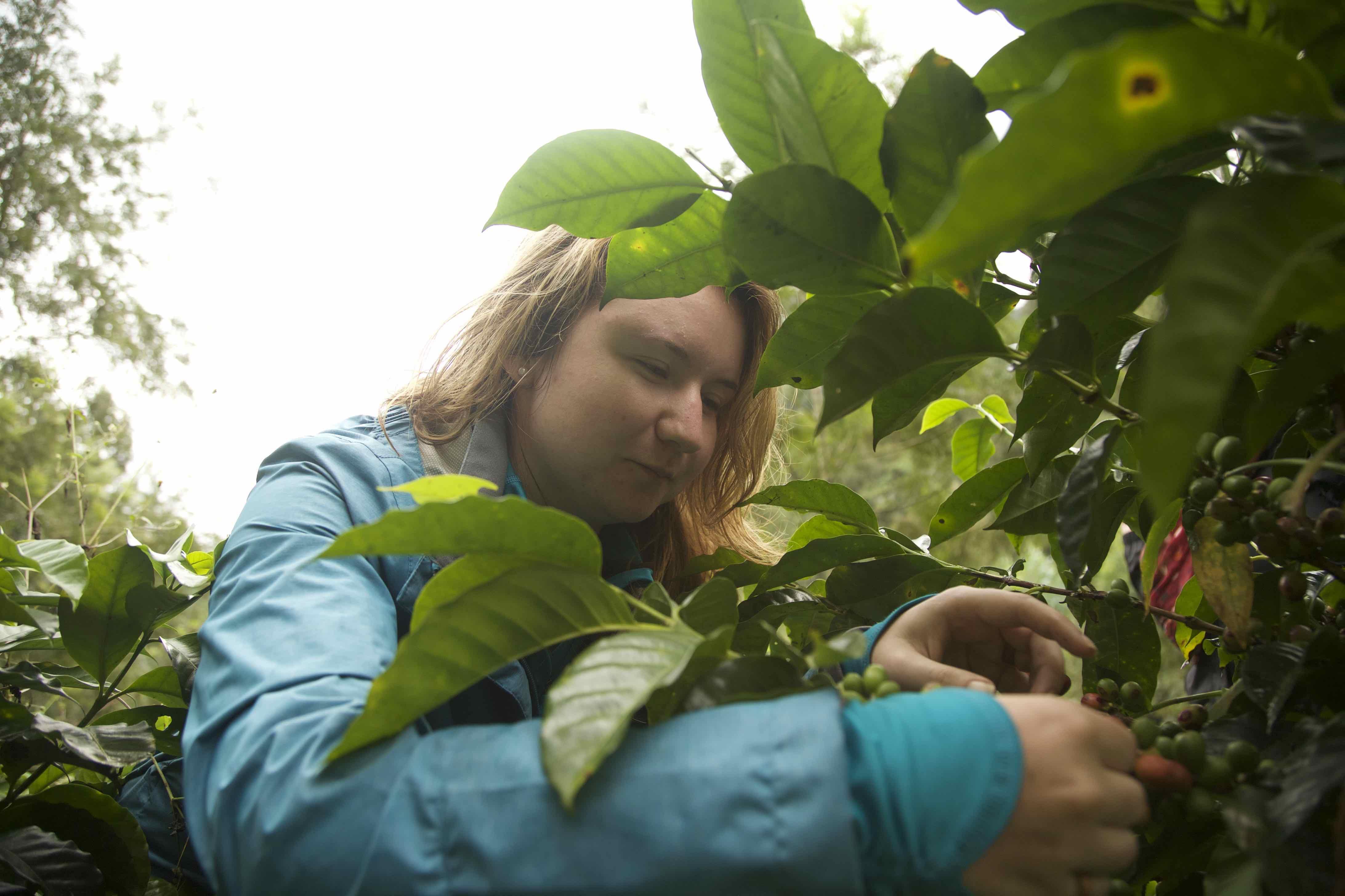 Image of student Emily B picking fruit