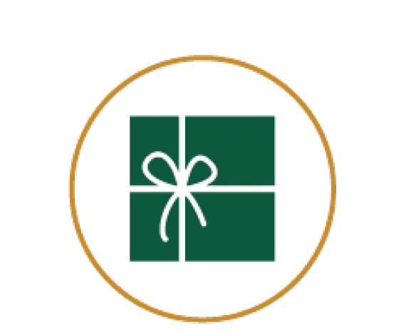Icon of gift