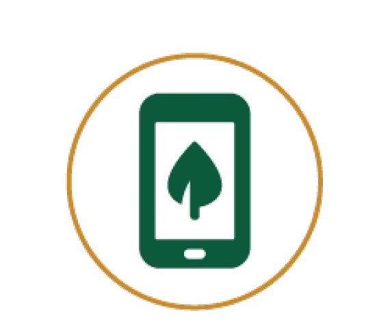 Icon of a mobile phone with picture of leaf